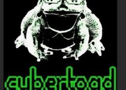 Что означает держи кибер жабу?