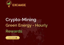 Excaage.com — какие отзывы, платит или нет?