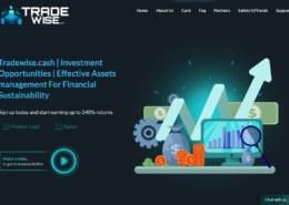 Tradewise.cash — платит или нет, какие отзывы?