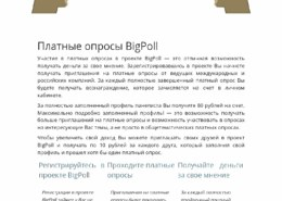 bigpoll.ru-что за сайт, он платит или нет, какие отзывы?