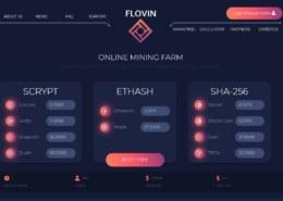 Flovin.ltd — какие отзывы, платит или лохотрон?