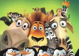 Madagascarr.org — платит или нет, какие отзывы?