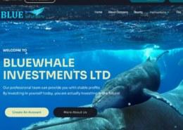 Bluewhaleinv.com — какие отзывы, платит или лохотрон?
